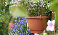 Подвесной цветочный горшок Agro d 235 мм Prosperplast, фото 1