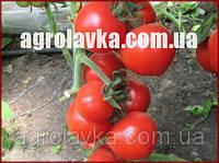 Насіння томату індетермінантного ХИТОМАКС F1(Kitano) 100с