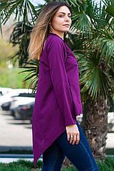 Фиолетовая женская рубашка - туника с удлиненной спинкой, длинный рукав, размеры S - XL
