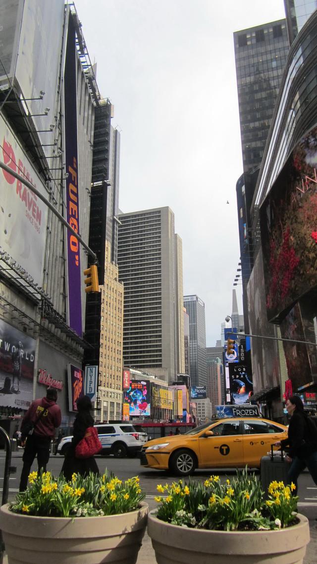 Раздел Капри на резинке - фото teens.ua - Нью-Йорк,Таймс Сквер