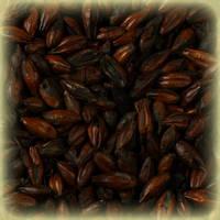 Несоложенный жженый ячмень Roasted Barley (Бельгия, Германия) 25кг