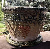 Цветочник виноград средний, фото 1