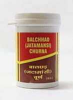 Джатаманси чурна/порошок, Jatamansi churna, 50 грамм - балансировка нервной стстемы