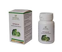 БАД Брокколи - природный индол средство против опухолей 90 таблеток