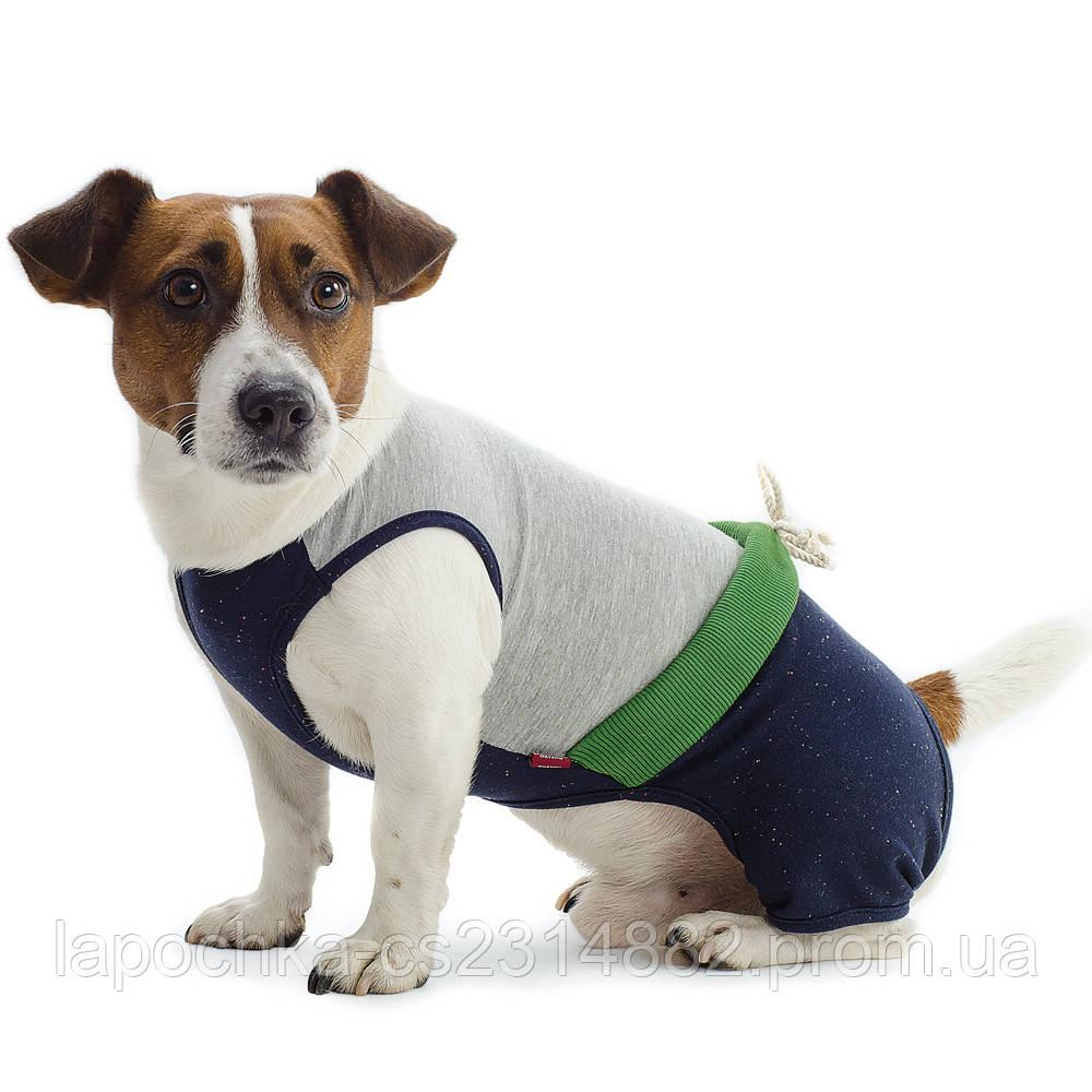 Костюм Pet Fashion Фитнес для собак, M (Яблоко)