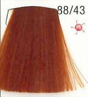 Стойкая крем-краска для волос WELLA 88/43 Koleston Ирландское лето 60 мл
