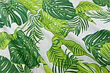 """Ткань хлопковая """"Листья монстеры и пальмы"""" большие, зелёные на белом, без ромбов №1339, фото 3"""