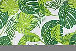"""Ткань хлопковая """"Листья монстеры и пальмы"""" большие, зелёные на белом, без ромбов №1339, фото 5"""