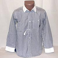 Детская школьная рубашка для мальчика Coolclub р.116 отличного качества