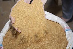 Дрожжи кормовые СП 36-40%, (кукурузные) барда, фасовка 30 кг, фото 2