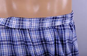 Мужские  трусы боксеры из поплина C+3 #004 XL белый с голубым , фото 2