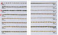 Декоративные гвозди любого цвета (бронза, серебро, золото, старое золото) и размера (9,5, 11, 16мм)