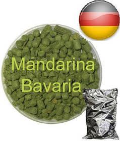 Хмель Мандарина Бавария (Mandarina Bavariya)