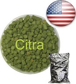 Хмель Цитра (Citra), α-13% Урожай 2019