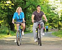 Различия дамских велосипедов от мужских?