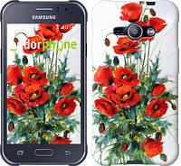 "Чехол на Samsung Galaxy J1 Ace J110H Маки ""523c-215-601"""