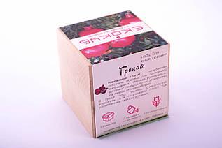 Набор для выращивания декоративных растений Экокуб Гранат