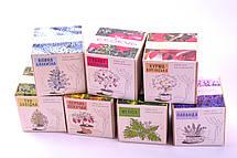 Набор для выращивания декоративных растений Экокуб Голубая Ель, фото 2