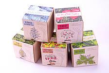 Набор для выращивания декоративных растений Экокуб Жгучий перчик, фото 2