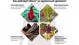 Препарат от паразитов Intoxic (Интоксик), фото 2