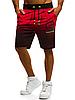 Мужские шорты 0228