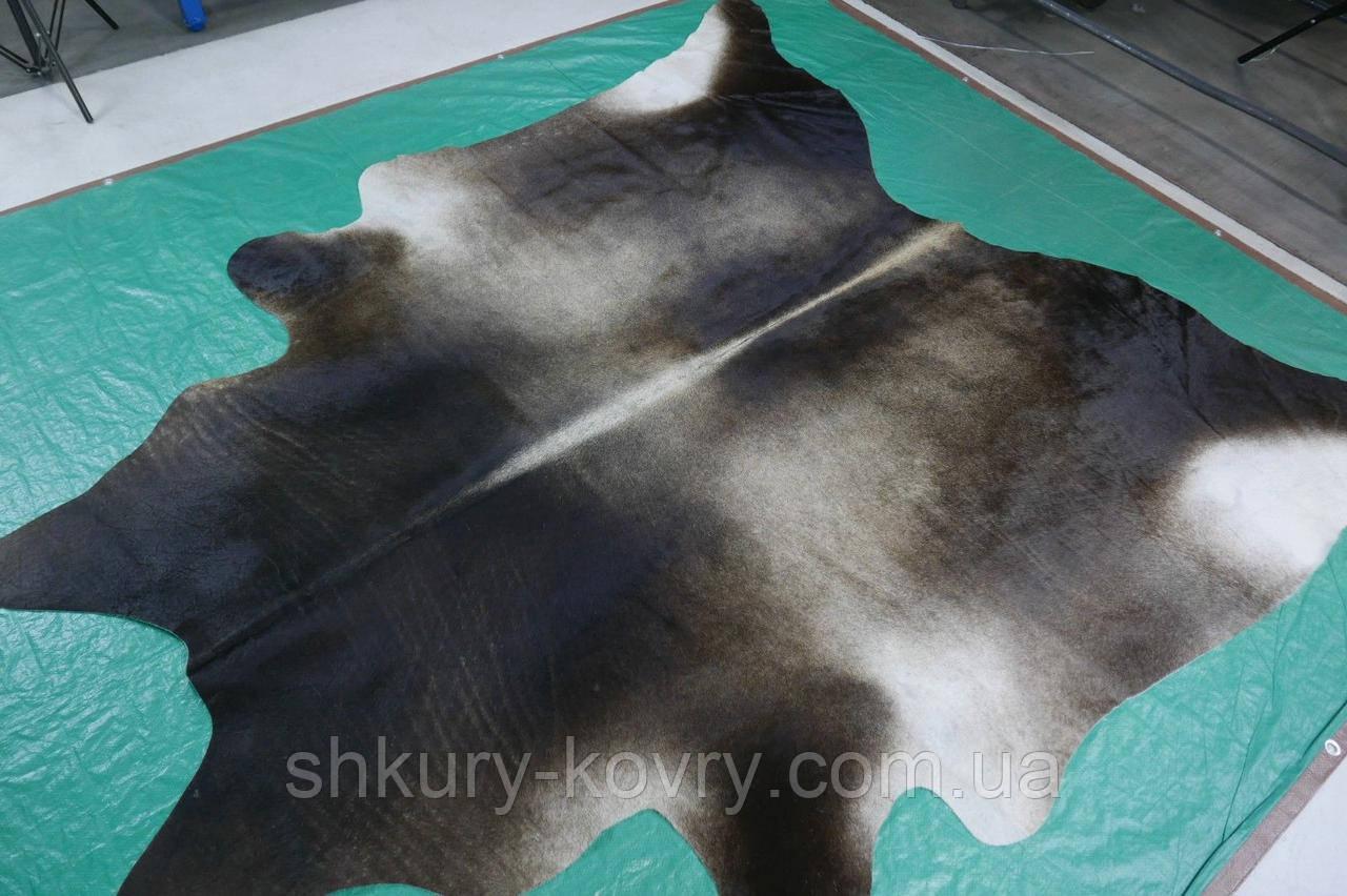 Шкура коровы красивого природного серо кофейно черного окраса