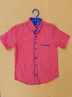 Рубашка подростковаяс коротким рукавомдля мальчика 12-16 лет, красная