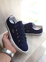 aa2ba79742e5 Мужская обувь летняя Кеды Lacoste Летний текстиль синие и беж 40-45 Супер  качество Турция