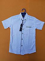 Рубашка подростковаяс коротким рукавомдля мальчика 12-16 лет, белая
