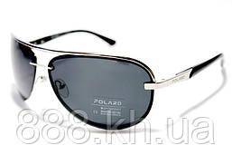 Polard P06001 2