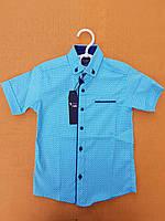 Рубашка детскаяс коротким рукавомдля мальчика 6-11 лет, голубая