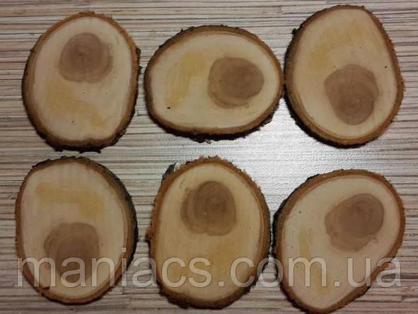 Срез дерева. Яблоня 11 - 15 см