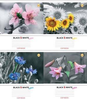 Зошит 24 клітинка Тверда 81375 Квіти ТЕТРАДА (20шт. в упаковке), фото 2