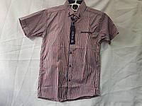 Рубашка детскаяклетка с коротким рукавомдля мальчика 6-11 лет, красная