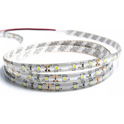 """Світлодіодна стрічка """"REN"""" LED 35x28 60Led/m (4,8W/m) біла,черв,зелен,синя,жовта 12V IP65 , фото 2"""