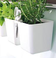 Кашпо двойное для растений Twins Cube 2.5 л Prosperplast