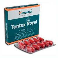 Тентекс Роял, Tentex Royal, №10