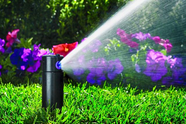 дождеватель автоматического полива - фото