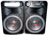 Активна акустика RockMusic RC - 8888, фото 1