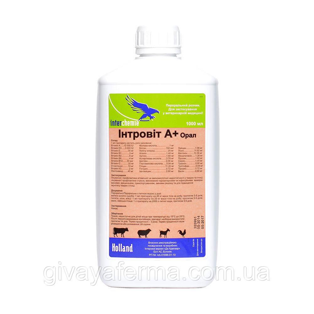Интровит А+ Орал, 10 мл, Интерхим, витаминно-аминокислотный комплекс