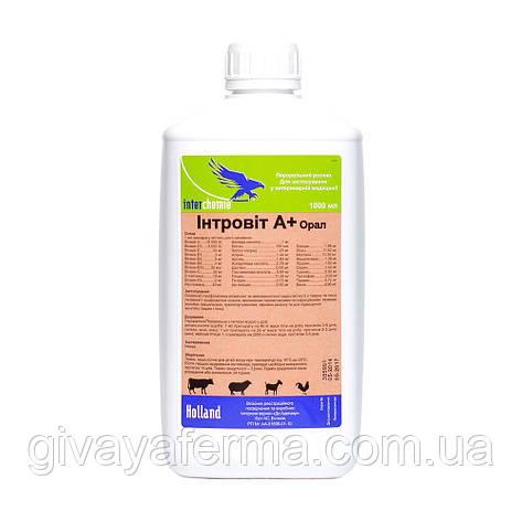 Интровит А+ Орал, 10 мл, Интерхим, витаминно-аминокислотный комплекс, фото 2