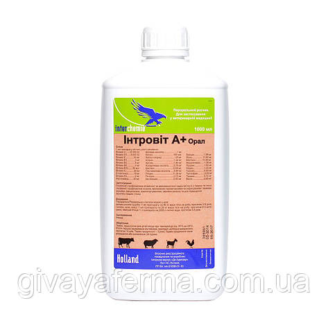 Интровит А+ Орал 100 мл, Интерхим, витаминно-аминокислотный комплекс, фото 2