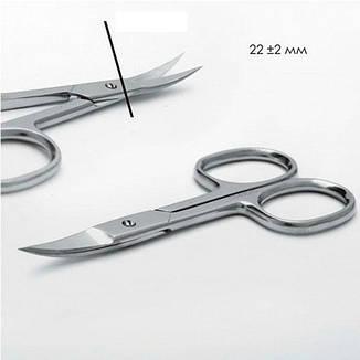 Сталекс Ножницы Classic SC-61-2 маникюрные для ногтей загнутые лезвия 24мм, фото 2