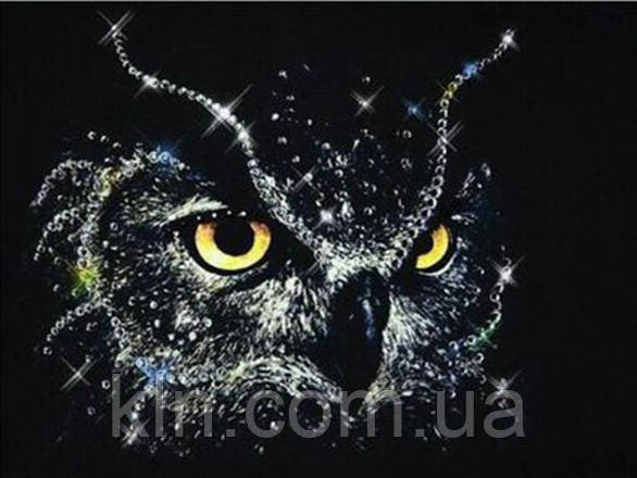 Алмазная вышивка Сова в ночи 30 х 40 см (арт. FR443)