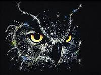 Алмазная вышивка Сова в ночи 30 х 40 см (арт. FR443) , фото 1