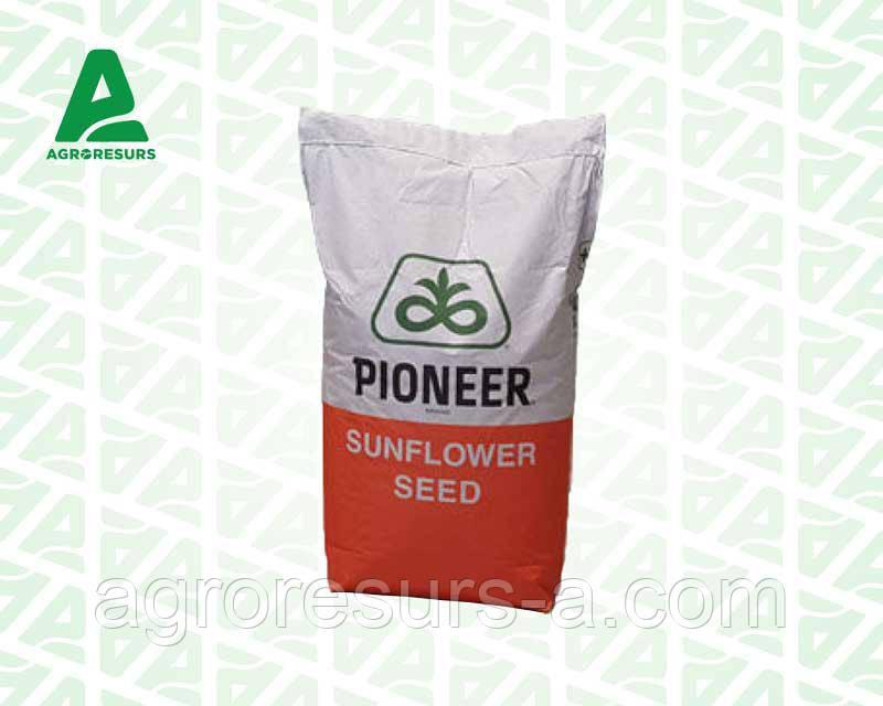 Семена подсолнечника П64ЛЦ108, Пионер