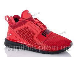 Мужские кроссовки Puma IGnite