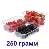 Пінетки для ягід 250 грам