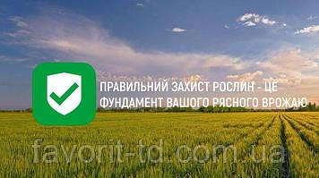 Правильний захист рослин - це фундамент Вашого рясного врожаю.