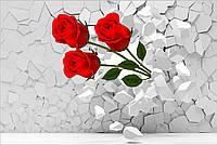 Фотообои розы в стене 3D